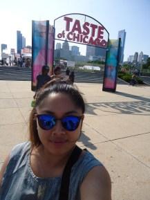 Outside the Taste of Chicago - Festivals Galore!